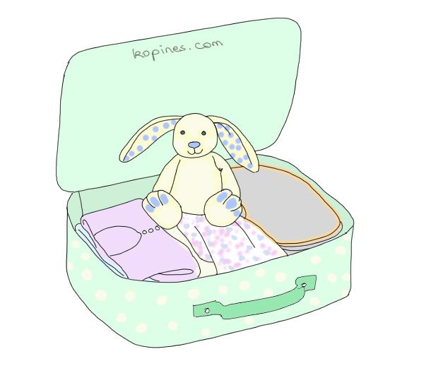 valise-maternite-1